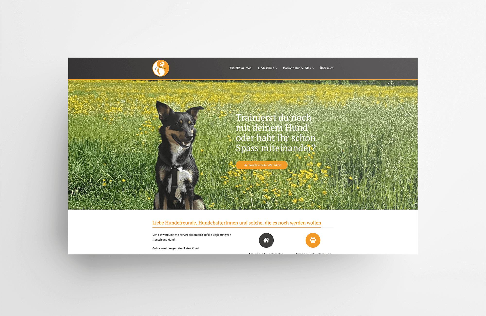 Hundeschule Wetzikon | Website